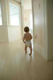 家の中を散歩する男の子の写真素材 [FYI04070536]