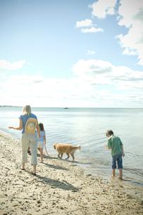 犬と一緒に浜辺を歩く家族4人の写真素材 [FYI04070690]