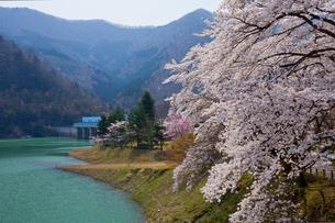 大野ダムの写真素材 [FYI04071561]
