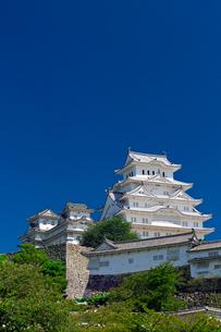 姫路城の写真素材 [FYI04071588]