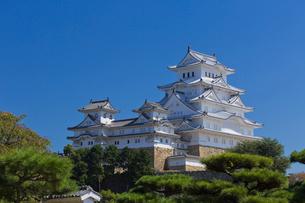 姫路城の写真素材 [FYI04071589]