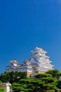 姫路城の写真素材 [FYI04071591]