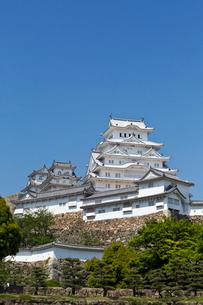 姫路城の写真素材 [FYI04071721]