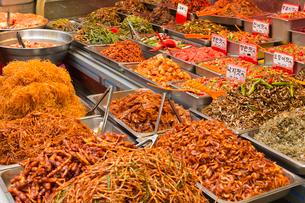 韓国料理,辛い料理の写真素材 [FYI04071806]