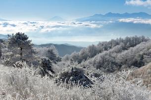 高ボッチからの富士山の写真素材 [FYI04071825]