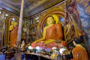 ガンガラメヤ寺院の写真素材 [FYI04071835]