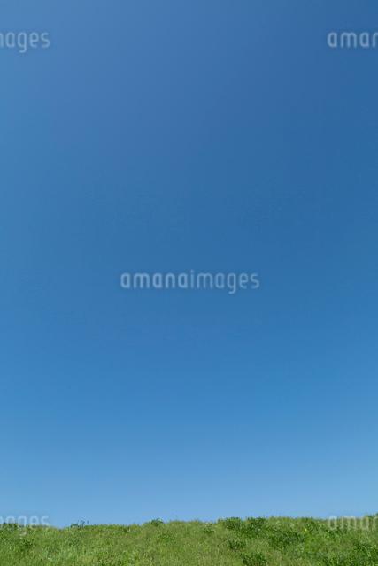 土手と青空の写真素材 [FYI04071885]