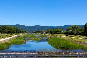 賀茂川の写真素材 [FYI04072124]