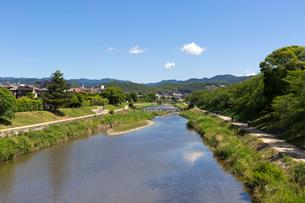 賀茂川の写真素材 [FYI04072127]