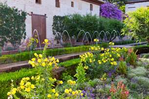 フェネラリーフェ庭園の写真素材 [FYI04072176]