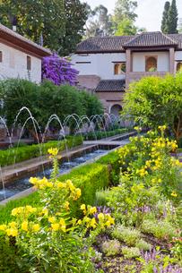 フェネラリーフェ庭園の写真素材 [FYI04072179]