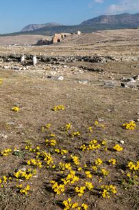 ヒエラポリス遺跡の写真素材 [FYI04072227]