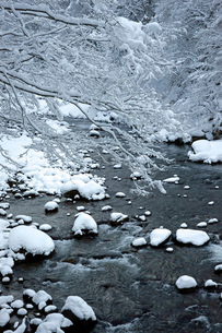 雪の長良川の写真素材 [FYI04072564]