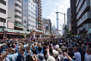 三社祭,浅草雷門通りの神輿の写真素材 [FYI04072817]