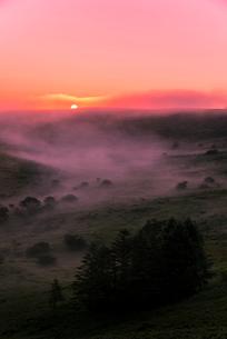 車山肩よりご来光と霧ヶ峰高原車山湿原朝焼けの空と朝霧の写真素材 [FYI04072820]