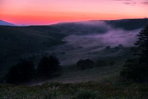 車山肩より夜明けの霧ヶ峰高原車山湿原朝焼けの空と朝霧の写真素材 [FYI04072835]