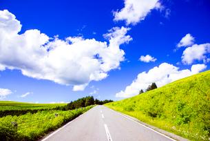 霧ヶ峰高原ビーナスラインと夏の浮雲の写真素材 [FYI04072836]