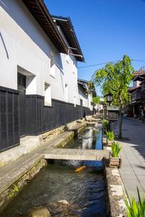 飛騨古川 瀬戸川と白壁土蔵街の写真素材 [FYI04073052]