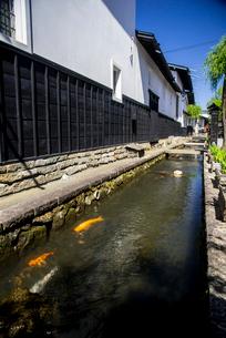 飛騨古川 瀬戸川と白壁土蔵街の写真素材 [FYI04073053]
