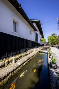 飛騨古川 瀬戸川と白壁土蔵街の写真素材 [FYI04073054]