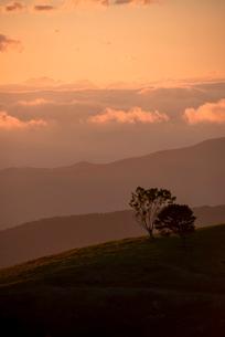 入笠高原より望む乗鞍岳方向夕焼けと雲海の写真素材 [FYI04073109]