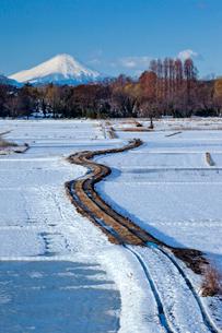 雪化粧の田園の農道と富士山の写真素材 [FYI04073199]