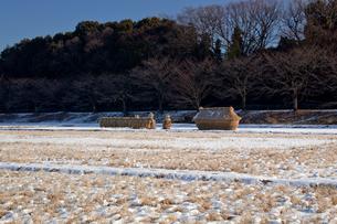 雪の見沼田んぼとフナノの写真素材 [FYI04073245]
