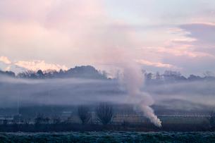 焚き火の煙漂う朝の見沼田んぼの写真素材 [FYI04073333]