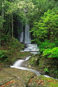 新緑の悠久の森 山神滝の写真素材 [FYI04073408]