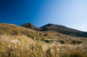 秋のえびの高原の写真素材 [FYI04073414]
