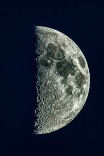 上弦の月の写真素材 [FYI04073482]