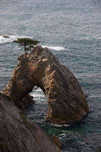 浦富海岸の千貫松島の写真素材 [FYI04073585]