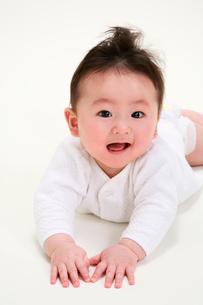 赤ちゃんの写真素材 [FYI04073624]