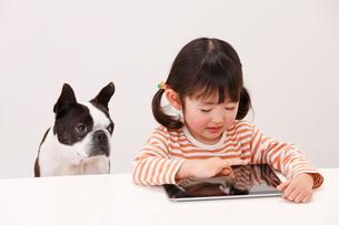 タブレットを触る女の子と犬の写真素材 [FYI04073629]