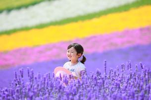 ラベンダー畑で笑う女の子の写真素材 [FYI04073659]
