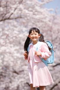 満開の桜と一年生の写真素材 [FYI04073677]