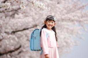 桜の下の一年生の写真素材 [FYI04073679]