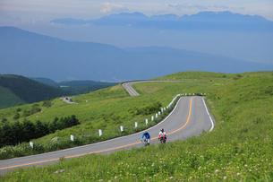 ビーナスラインを走るサイクリストの写真素材 [FYI04073744]