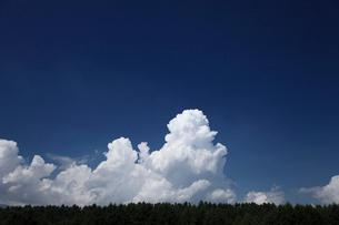 入道雲と青空の写真素材 [FYI04073798]