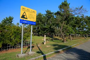 地震だ津波だすぐ避難の標識の写真素材 [FYI04073887]