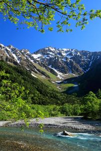 新緑の梓川と穂高連峰の写真素材 [FYI04073903]
