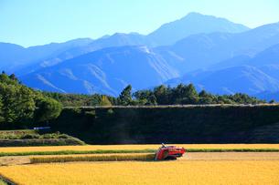 コンバインで稲刈りをする農家と南アルプスの写真素材 [FYI04074029]