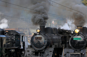 大井川鐡道の蒸気機関車の写真素材 [FYI04074145]