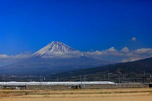 新幹線と富士山の写真素材 [FYI04074201]