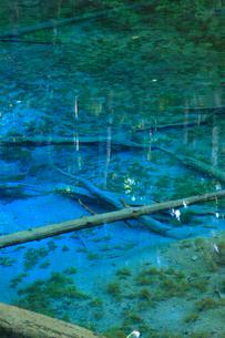 神の子池の写真素材 [FYI04074325]