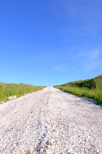 白い道の写真素材 [FYI04074398]