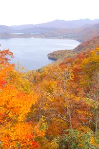 十和田湖の紅葉の写真素材 [FYI04074451]