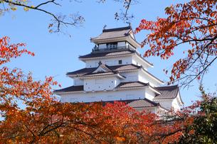 鶴ヶ城の紅葉の写真素材 [FYI04074469]