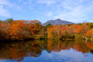 八方湖の紅葉の写真素材 [FYI04074472]