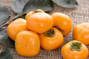 おけさ柿の写真素材 [FYI04074499]
